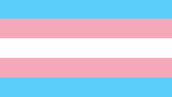 Transgender Awareness Week: A Reading List